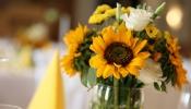 wedding-foto_095